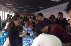 回顾:第16届湖南文物(国际)博览会